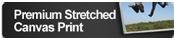 Premium Stretched Canvas