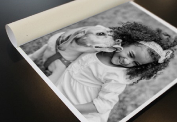 Loose Canvas Print - Black and White